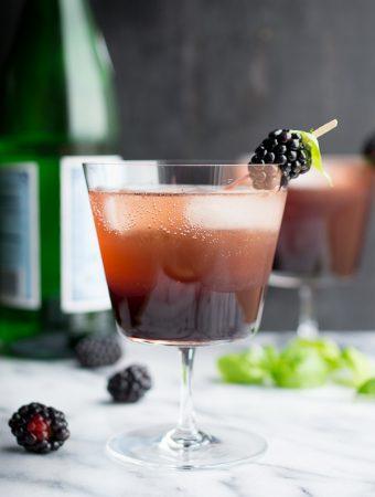 Blackberry Basil Shrub | @tasteLUVnourish