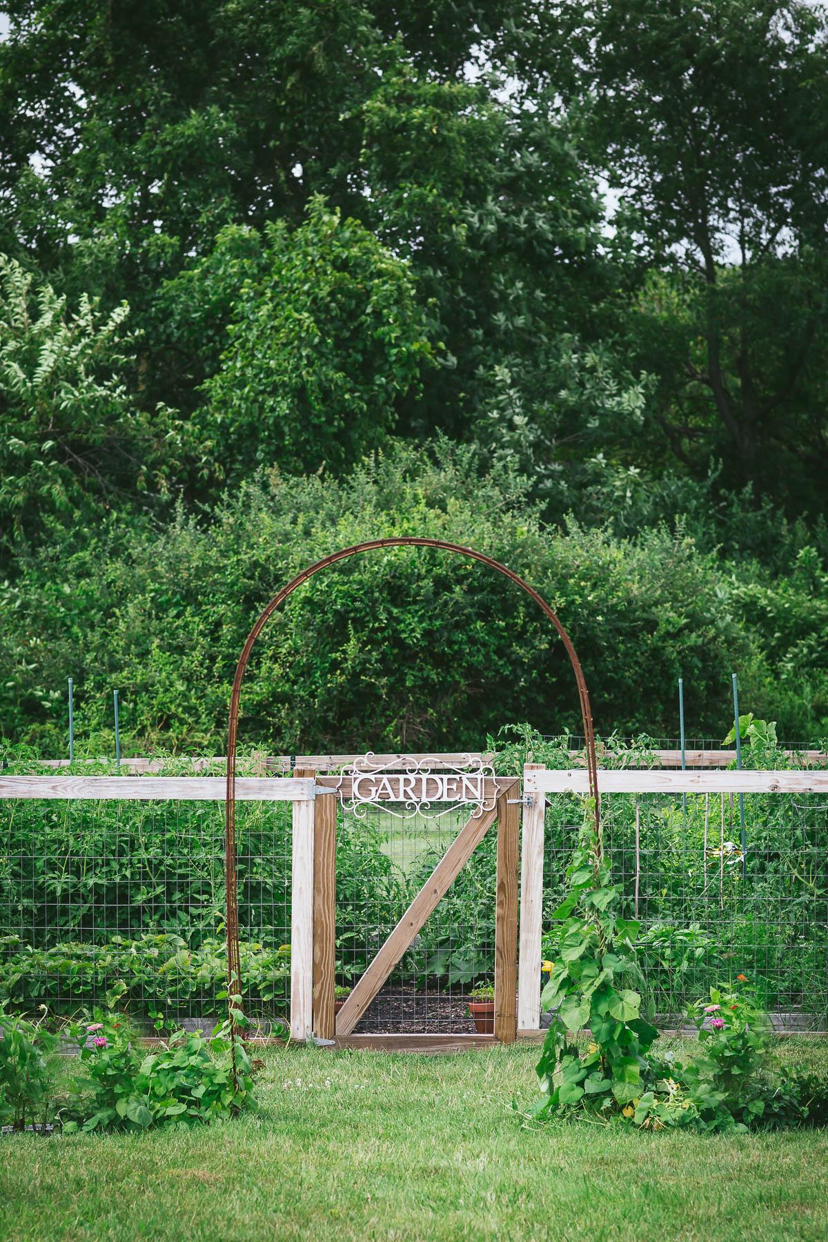 Vegetable garden @tasteLUVnourish